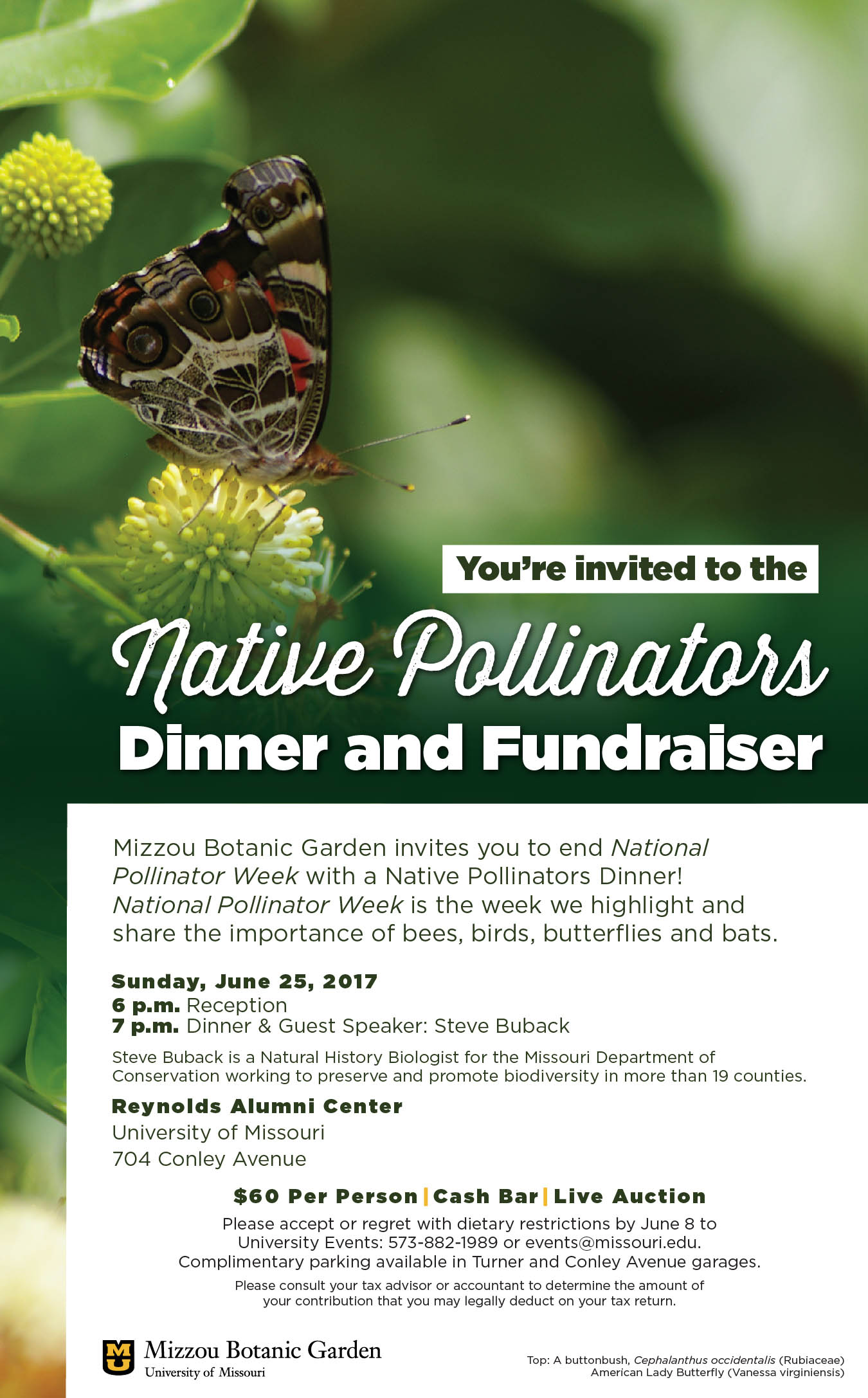 Native Pollinators Invitation